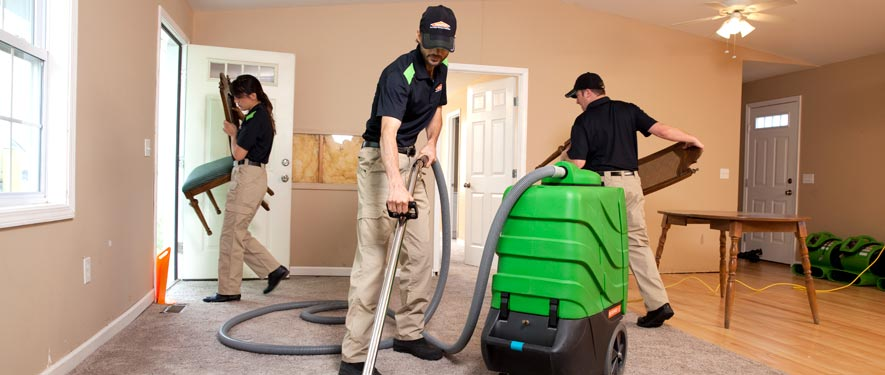 Media, PA cleaning services
